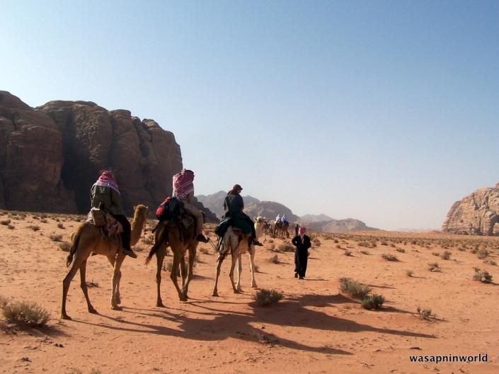 Camel trail